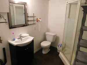 House For Rent in Aylmer London Ontario image 4