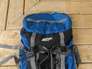 Expedition Back Pack - Mint - Used Once