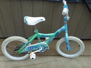 """Girls Bike 16"""""""