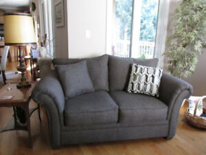 11 month old sofa & love seat