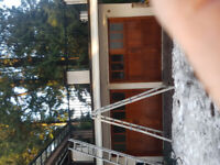 Aqua Gutter cleaning and repairs 778-322-7276 Larry