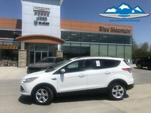 2015 Ford Escape SE  ACCIDENT FREE, BLUETOOTH, REVERSE CAM!