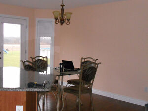 LOOKING FOR A PAINTER YOU CAN TRUST ? Windsor Region Ontario image 1