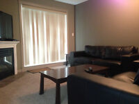 2 Bedroom 2 Bath Executive Downtown Condo