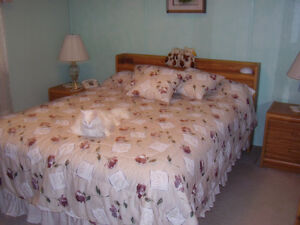 REDUCED PRICE!!!!QUEEN SIZE BED & FURNITURE - SACRIFICE !!
