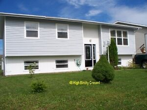Spacious 3 bedroom, 1.5 bathroom house located in Clarenville