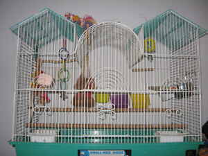 Large bird cage with the toys and feeders