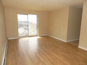 14 LEACREST COURT KITCHENER TWO BEDROOM FOR JAN/1 Kitchener / Waterloo Kitchener Area image 5