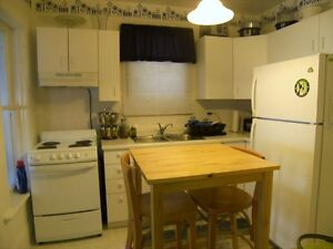Affordable Downtown Apartment with Garden Kitchener / Waterloo Kitchener Area image 3