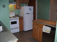 1 Bedroom Basement Apartment - Everything Included!!
