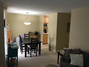 Top Floor 2 Bedroom (Nutana- Broadway Area)