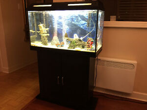 AQUARIUM A POISSON  32''  L X 14''  P X 21 H
