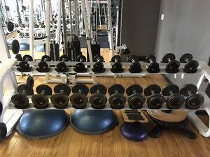 Dumbbells with the rack