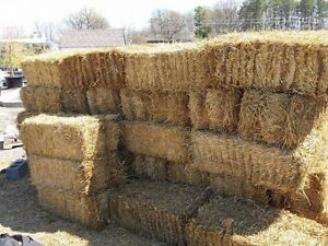 Straw Bales - Small Square