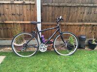 Crossroads specialized bike