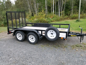Hardly Used 12' 5000 lbs Big Tex Trailer with spare.