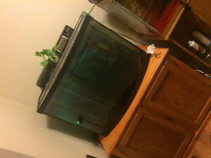 38 gallon bow front atand 2 filters and heater $150