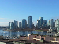 1 Bdrm Condo - Downtown Vancouver - Amazing Views