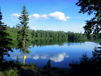 New Price! 9.98 acres Lakefront Property with Home