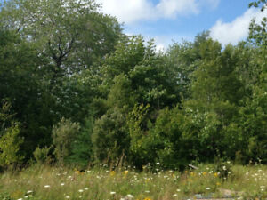 Lot for sale in Windsor Junction Fall River with City Water