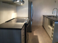 Brand new 3 1/2 condo for rent, 15 min from downtown $1050/m