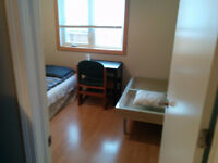 Nice Room for Single Male's Short-term Rental