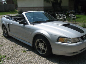 1999 Ford Mustang GT 35th anniversary convertible, low km