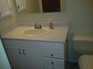 Seperate Entrance Basement Suite- Located steps away from Ctrain