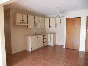 Appartement a louer - 4 1/2 - Longueuil - Style condo