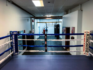 FREE BOXING CLASSES IN DOWNTOWN HAMILTON!