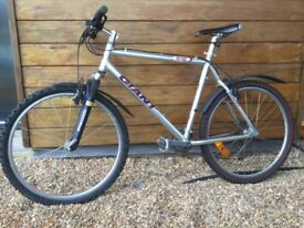 Giant Terrago mountain bike
