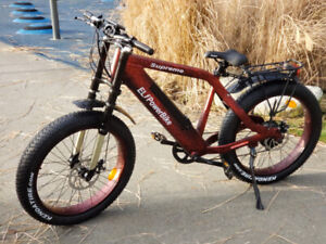 Super Fast Electric Bike (New4U)