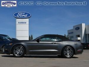 2015 Ford Mustang EcoBoost Premium Convertible  - Low Mileage