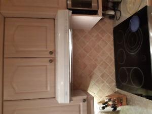 Kitchen  Stove Fan Venmar