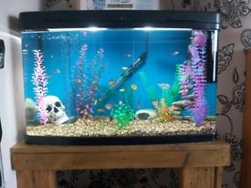 Interpet fish pod 120L