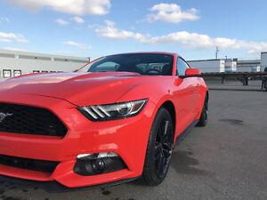 LOWEST $ in AB 15 Ford Mustang Ecoboost Premium LOADED