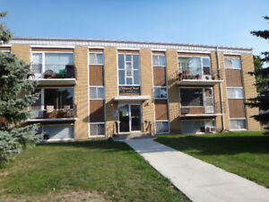 YORKTON - FURNISHED 2 Bedroom Apartment for RENT