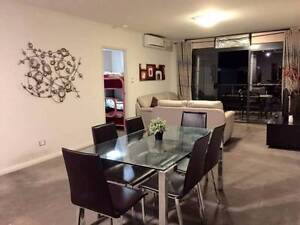 International Room Share~ FreeZone, Walk to CiTY!Clean and Best! Northbridge Perth City Area Preview