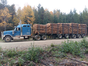 Timmins 10bunk 5 axle