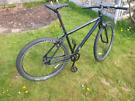 "Vitus Vee 29"" City Bike - Single Speed (SS) Mountain Bike (MTB) Large"