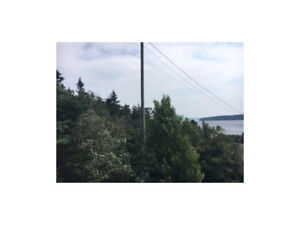Ocean View treed lot just under a half acre!