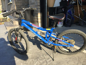 "Youth 20"" bike. EUC"