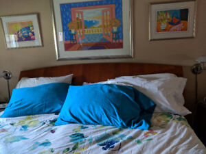 Mint condition Italian Solid wood Headboard and panels