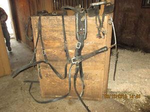 Harnais double en cuir pour chevaux de 1000-1300 lbs