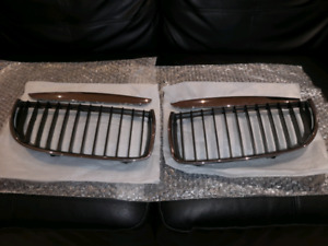 BMW E90 Kidney Grilles