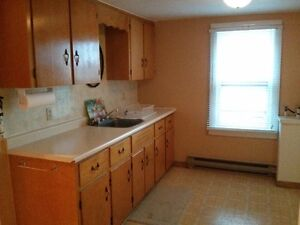 1 BR apartment Springhill - Available May 1st