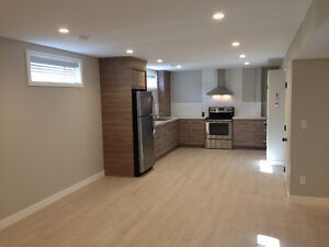 New, Superior Quality, Modern & Clean Basement Suite! Ready Now!