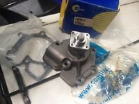Smiley face Ford transit water pump