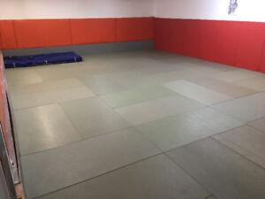 Salle à louer pour cours de yoga, arts martiaux, danse, etc...
