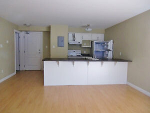 Spacious bachelor with a terrace in South End for August 1st.